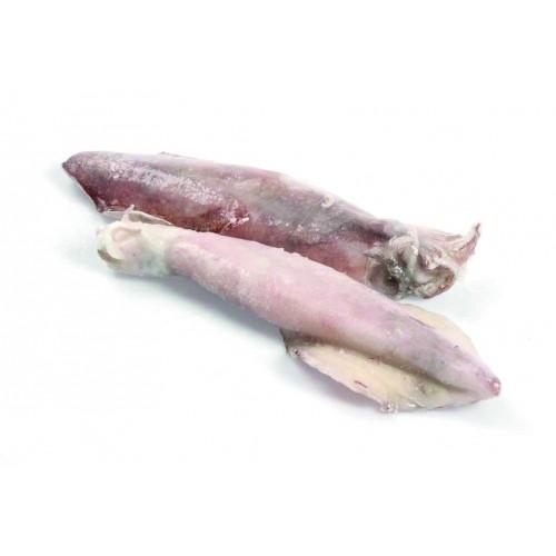 """Calamari sporchi """"S"""" orig. SUDAFRICA"""